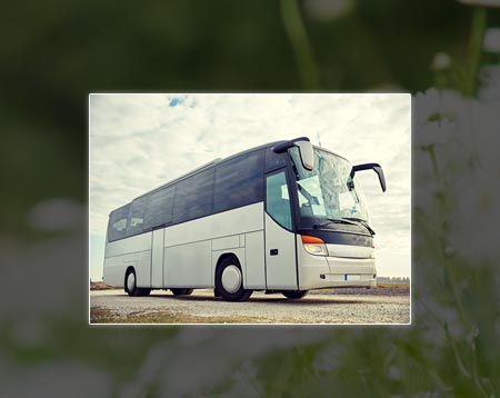 oakville party bus rentals
